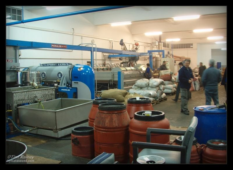 olive processing plant